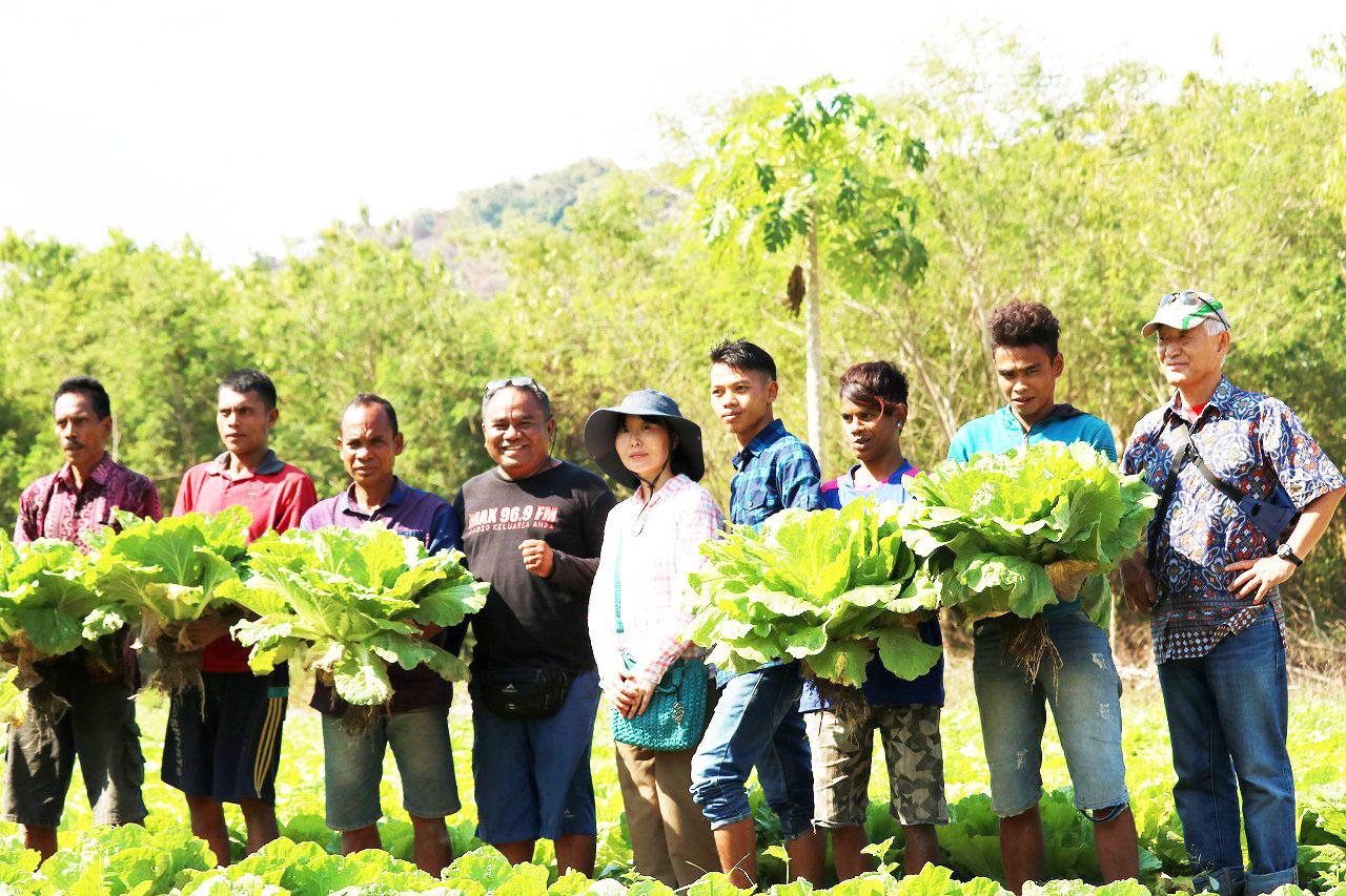 野菜作り支援(インドネシア)
